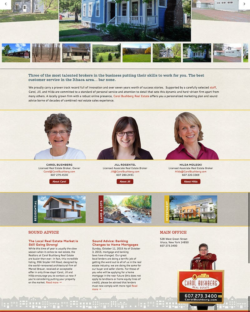 Website Design | Carol Bushberg Real Estate | target market focus on home buying and selling | real estate agent brokers located in Ithaca, NY