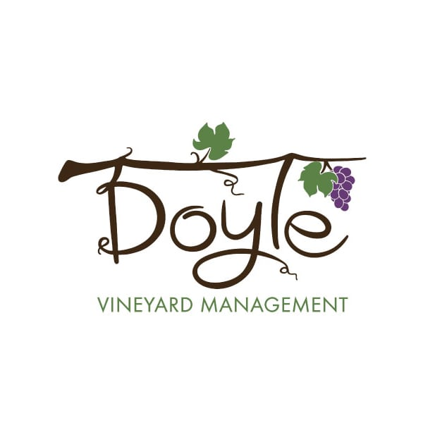 Business Logo Design | Doyle Vineyard Management |target market of grape growers, wine makers, Finger Lakes Wineries, supply of grapes for award winning wines, and sustainable vineyards | vineyard located in Hammondsport, NY