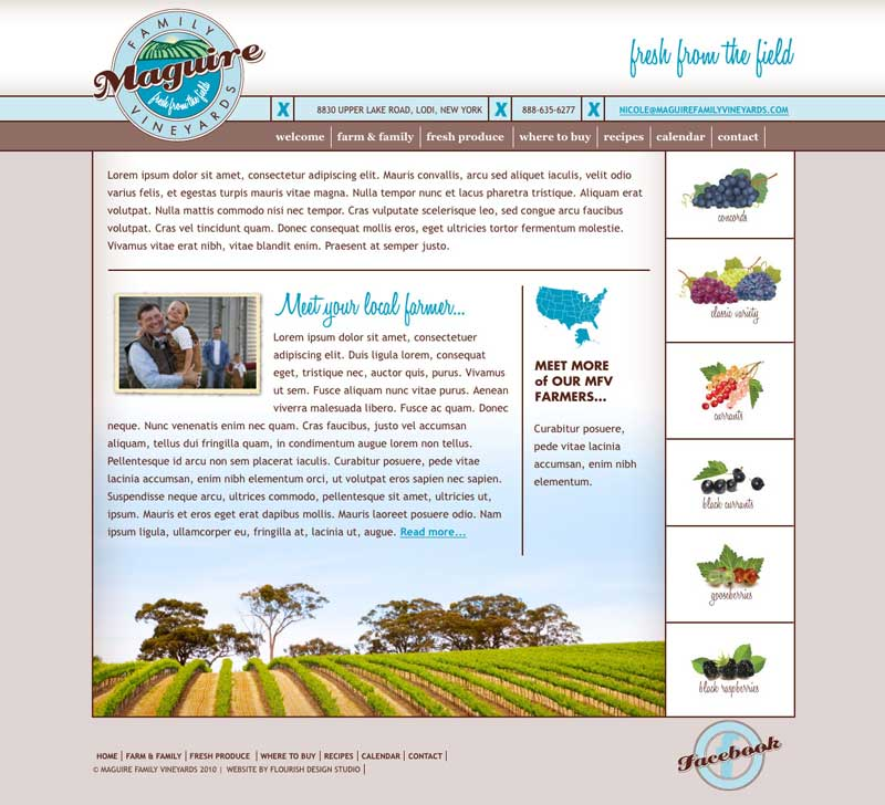 Website Design | Maguire Family Vineyards | target market on vineyards, wine enthusiasts, growers, wineries, commercial storage | Vineyard located in the Trumansburg, NY, Finger Lakes