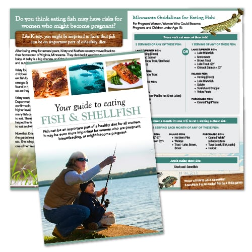 Brochure Design | Cornell University Department of Natural Resources | focused target market on consumption of fish and shellfish | deparment located in Ithaca, NY