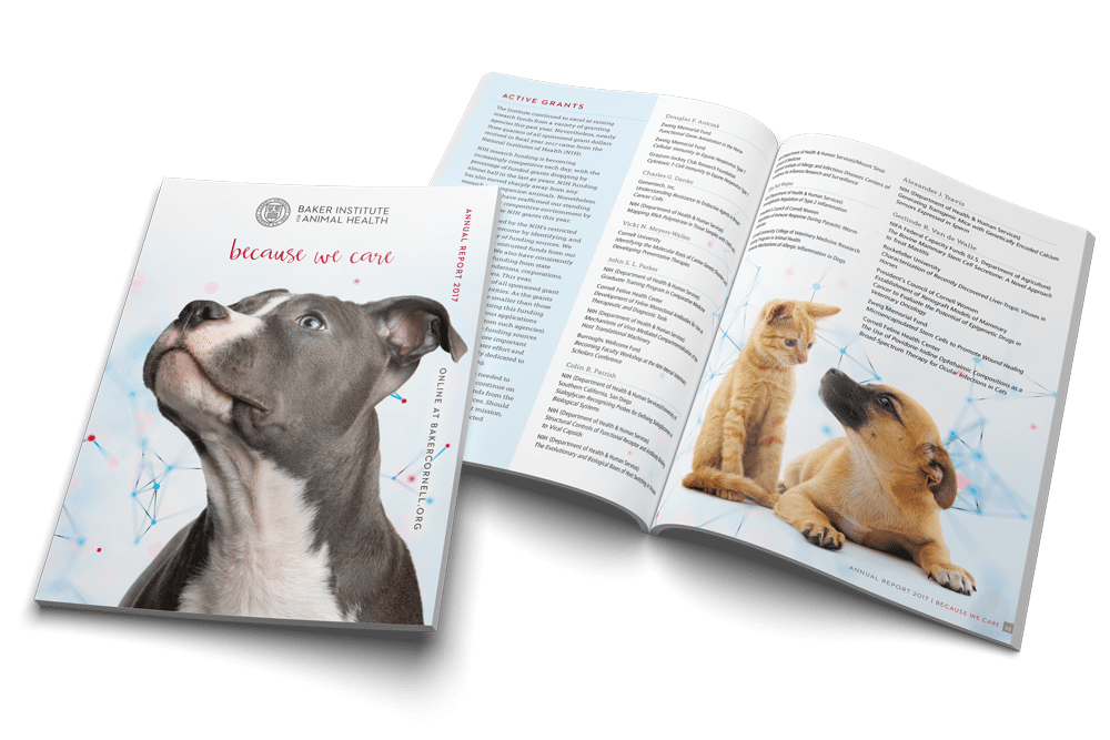 Annual Report Design | 2017 | Cornell University Baker Institute for Animal Health | Report features research updates and articles about the work performed at the Baker Institute for Animal Health